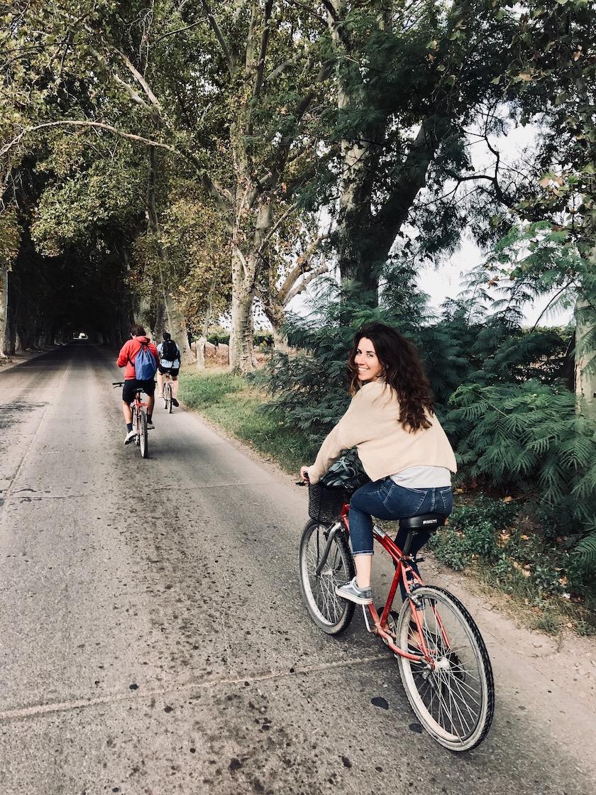 Wijnregio Mendoza: fietsen door Maipu